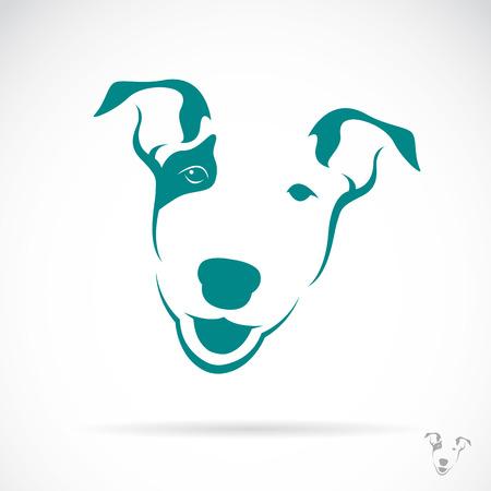 bull's eye: Vector image of a bull terrier on white background