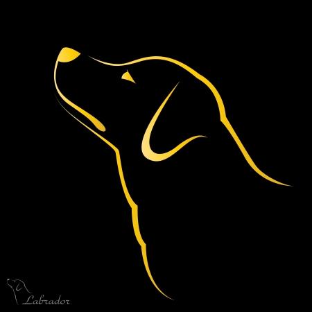 schattenbilder tiere: Vektor-Bild von einem Hund Labrador auf schwarzem Hintergrund Illustration