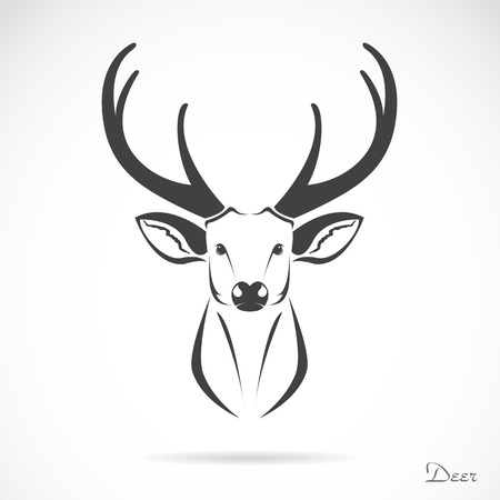 head to head: image of a deer head on white Illustration