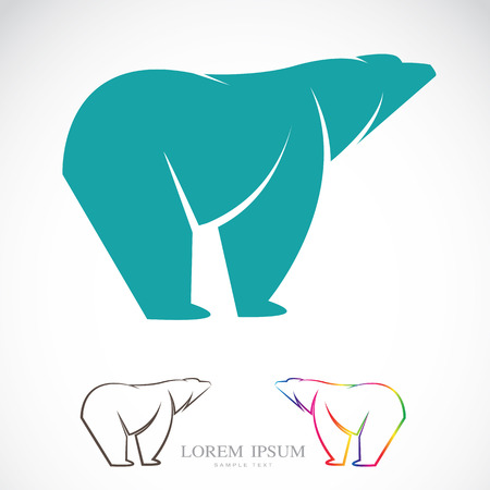 image of an bear on white Vector
