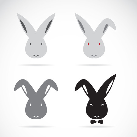Vector image of an rabbit on white background Stock Vector - 24752588