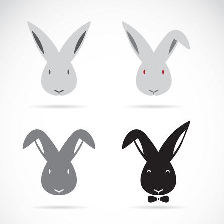 Vektor-Bild von einem Kaninchen auf weißem Hintergrund