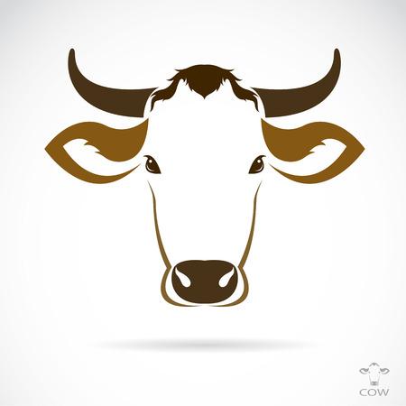 白い背景の上の牛頭のベクトル画像  イラスト・ベクター素材