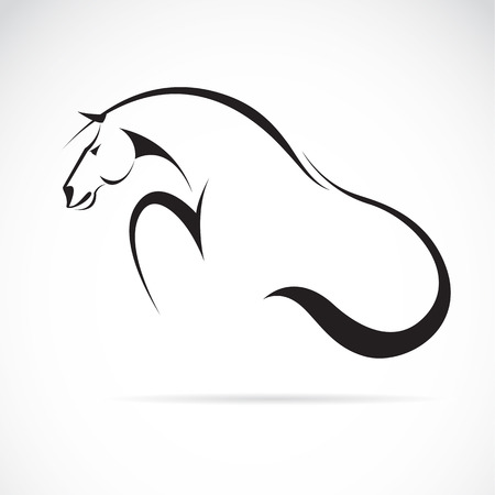 pedigreed: Vector image of an horse on white background