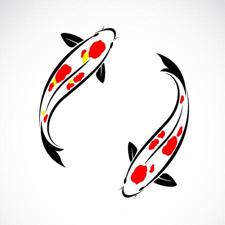 Vector afbeelding van een koi karpers op een witte achtergrond Vector Illustratie