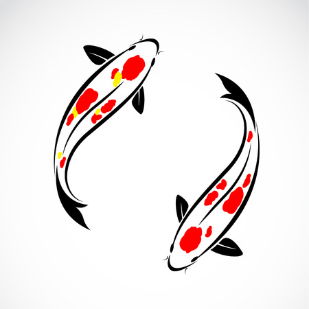 hokusai: Vector image of an carp koi on white background Illustration