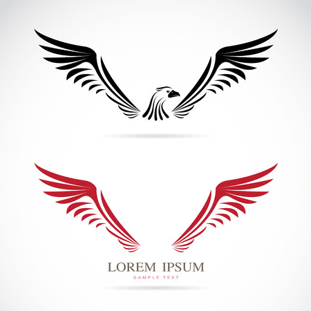 aigle: Vecteur d'image d'un aigle sur fond blanc