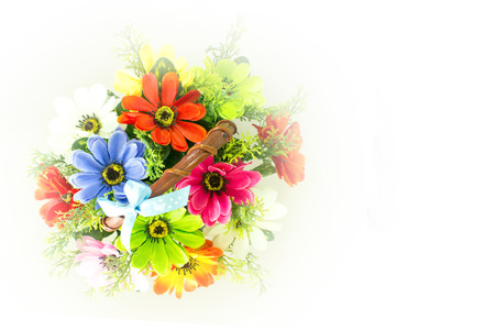 Colorful beautiful flowers on a white background. photo