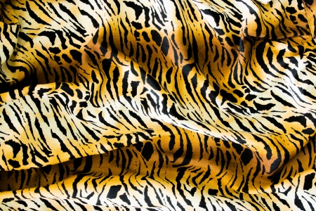 Tiger textile, piece of clothes.  photo