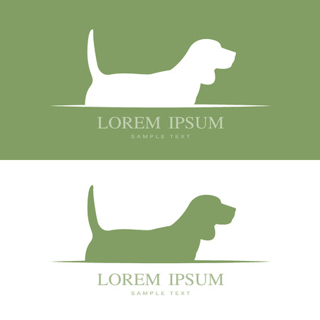 vet: Vector image of an dog beagle .