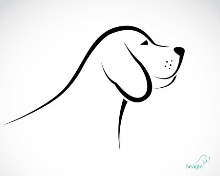 beagle puppy: Vector de imagen de un beagle perro sobre fondo blanco