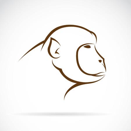 siluetas de animales: Vector de imagen de una cara de mono en el fondo blanco