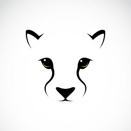 lion dessin: Vecteur d'image d'un visage de gu�pard sur fond blanc Illustration