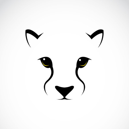 black and white panther: Vector image of an cheetah face on white background