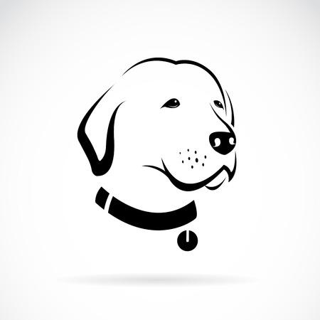 siluetas de animales: Vector de imagen de la cabeza de un perro Labrador en el fondo blanco
