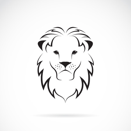 white lion: Vector image of an lion head on white background