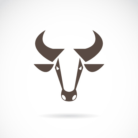 Vector image of an cow head on white background Vector