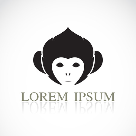 Vector image of an monkey head on white background Illustration
