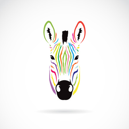 Vector image of an zebra head colorful on white background