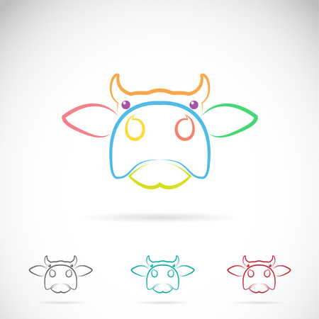 domestic cattle: Vector image of an cow face on white background