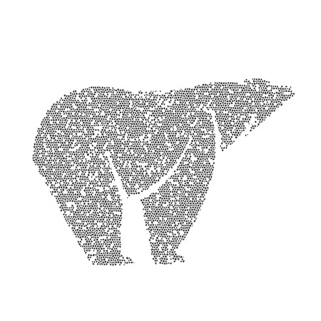 Vector image of an bear design on a white background Vector