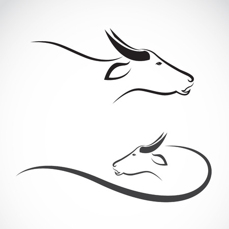 buey: Vector de imagen de un búfalo en el fondo blanco. Vectores