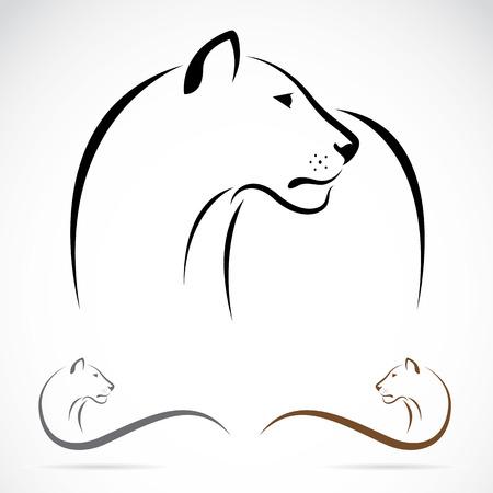 Вектор образ женского льва на белом фоне. Иллюстрация