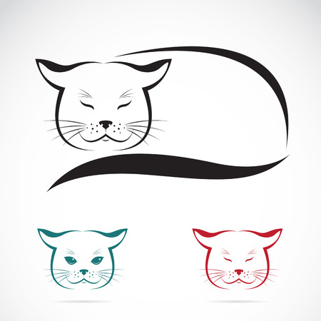 Vector image of an cat on white background Illustration