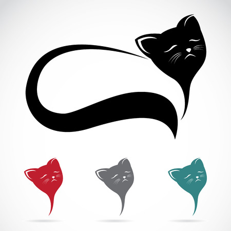 persian cat: Vector image of an cat on white background Illustration