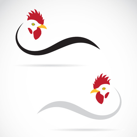 chicken wing: Vector image of an cock on white background