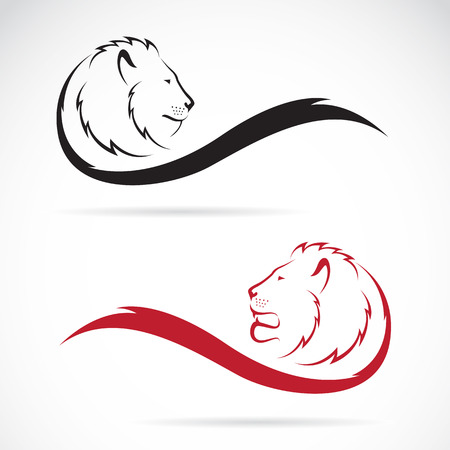 흰색 배경에 사자 머리의 벡터 이미지입니다.
