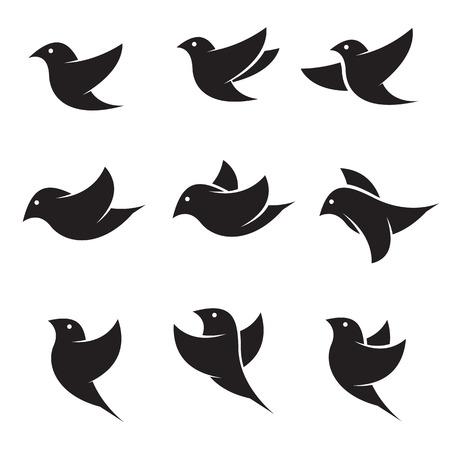 Conjunto de iconos del vector del pájaro en el fondo blanco