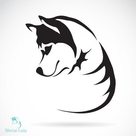 白い背景の上犬シベリアン ハスキーのベクトル画像