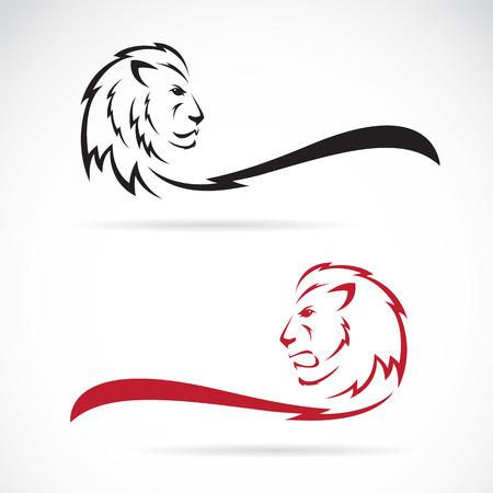 állat fej: Vektor kép egy oroszlán, fehér, háttér