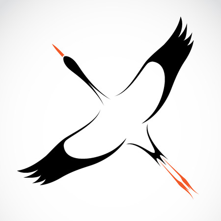black bird: Vector image of an stork on white background