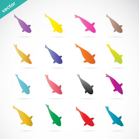 Vector group of colorful koi fish on white background Vector