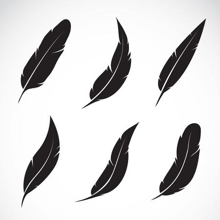 Vector groep van veren op een witte achtergrond