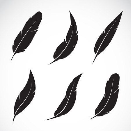 quill pen: Vector group of feather on white background Illustration