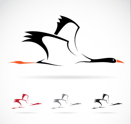 Vector image of an stork on white background Vector