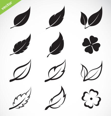 cuatro elementos: Vector deja conjunto de iconos en el fondo blanco