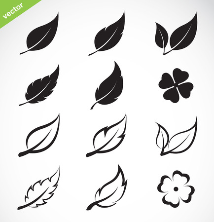 four objects: Vector leaves icon set on white background