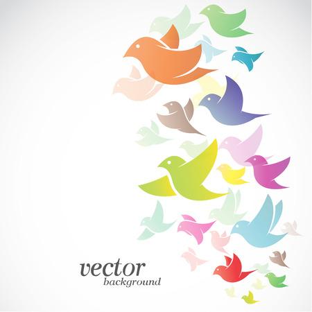 bandada pajaros: Diseño del pájaro en el fondo blanco - ilustración vectorial