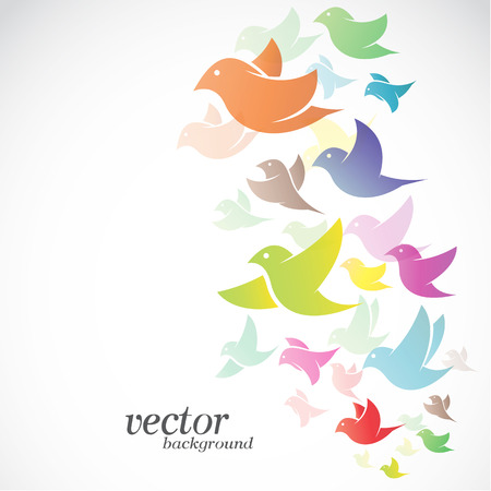 Bird design on white background -  Vector Illustration