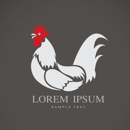 Vector image of a chicken on gray background Vector