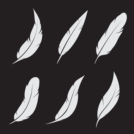 Vector groep van veren op zwarte achtergrond