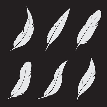 Vector group of feather on black background Vector