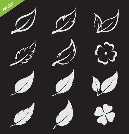 aspen: Vector leaves icon set on black background