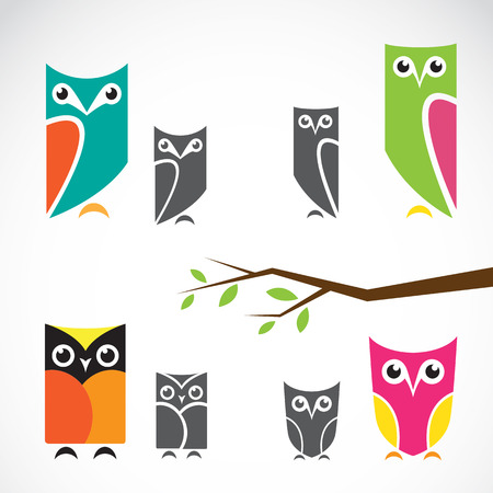 Vector group of owls and branch on white background Vector