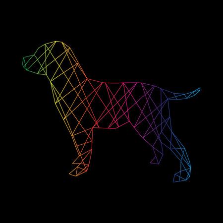 perro labrador: Abstracto perro Labrador aislada en un fondo negro. Ilustración vectorial