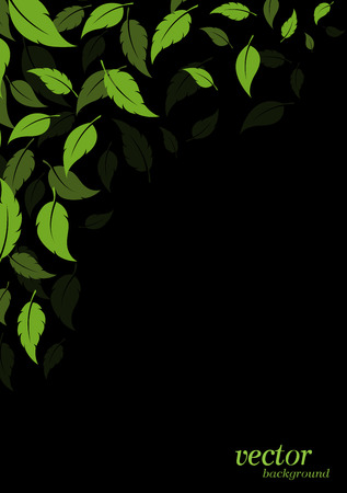 Abstract green leaves background Vector